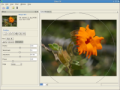 Citra FX Photo Filter Giveaway