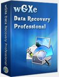wGXe Data Recovery Professional Giveaway