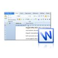 Kingsoft Writer is a powerful word processor that offers a smaller file size than its competitors.
